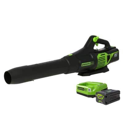 PRO 130 MPH 610 CFM 60-Volt Battery Cordless Handheld Leaf Blower with 2.5 Ah Battery and Charger