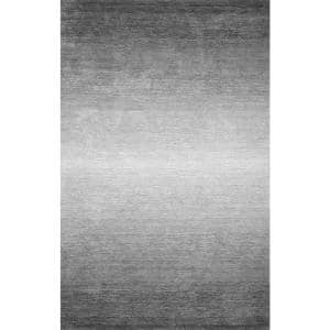Bernatta Contemporary Ombre Gray 6 ft. x 9 ft. Area Rug