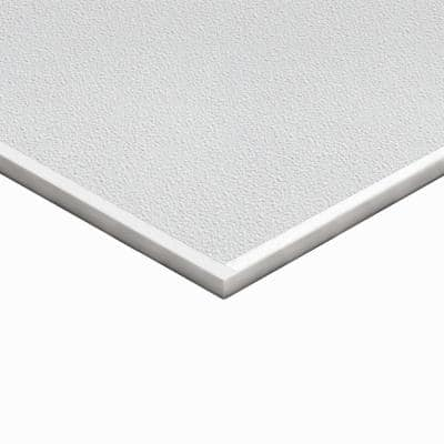 Teknotile 2 ft. x 2 ft. Stucco Ceiling Tile (32 sq. ft./case)