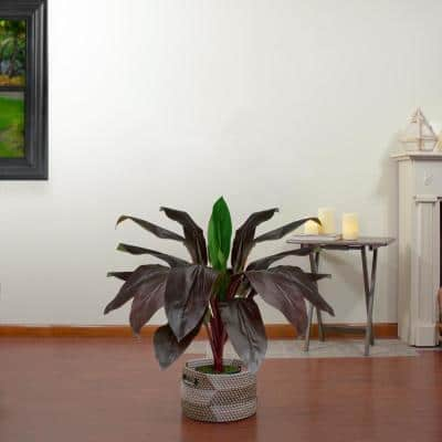"""23"""" Red and Green Artificial Dracaena Potted Plant Home Decor"""