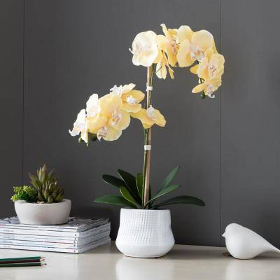 Cheerful Blooms 22 in. Artificial Yellow Orchid Centerpiece