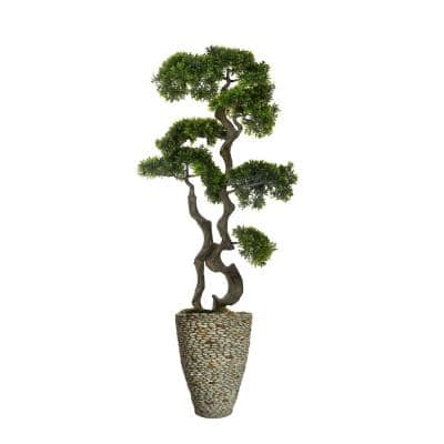 58.5 in. Bonsai Tree in Fiberstone Planter