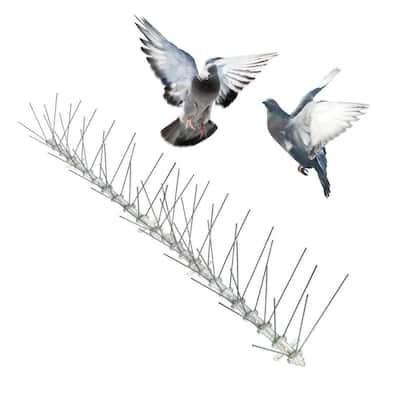 Original Stainless Steel Bird Spikes 100 ft. Pigeons Starlings Blackbirds Seagulls 6 in. Coverage