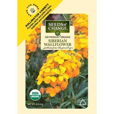 410 mg Siberian Wallflower Seeds