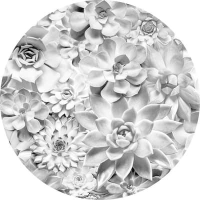Echeveria White Non Woven Dot Decal