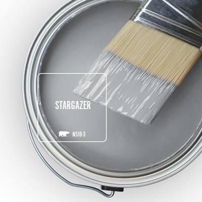 N510-3 Stargazer Paint