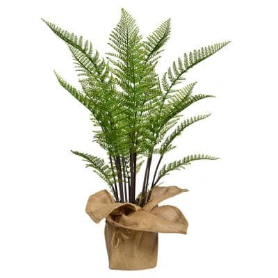 42 in. Tall Fern Plant Artificial Faux Decor with Burlap Kit