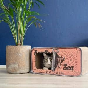 Sardine Peach Cardboard Cat Scratcher
