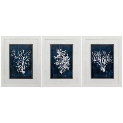 """Wood Coral Blue S/3"" Framed Wall Art 27 in. x 21 in"