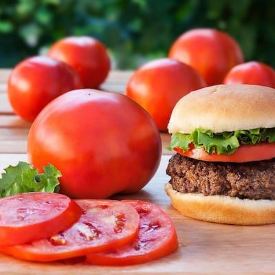 4.5 in. 19.3 oz. Tomato-Biltmore