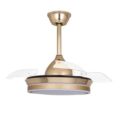 36 in. LED French Gold Retractable Ceiling Fan with Light and Remote Control
