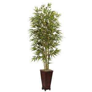 6 ft. Bamboo Tree with Decorative Planter