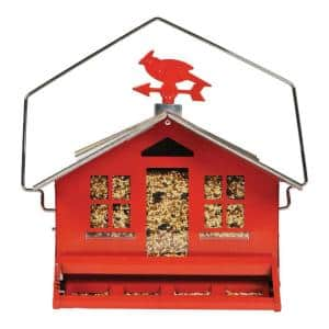 Metal Multiple Species Bird Feeder (1-Ports)