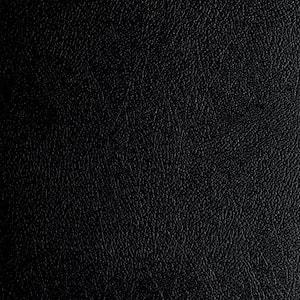 Levant 7.5 ft. x 17 ft. Midnight Black Vinyl Universal Flooring