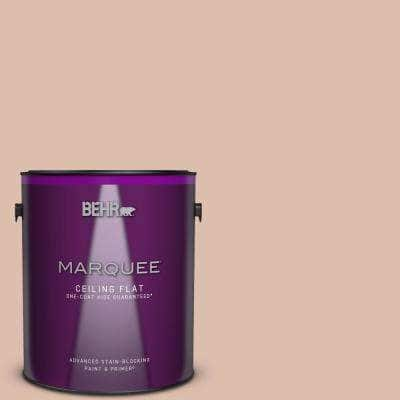 1 gal. #MQ1-23 One To Remember One-Coat Hide Ceiling Flat Interior Paint & Primer