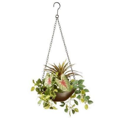 9 in. Assorted Greens Hanging Basket