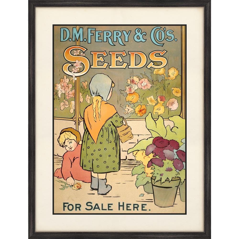 Melissa Van Hise Ferry Seeds Ii Framed Giclee Vintage Art Print 20 In X 26 In Ip16026 The Home Depot