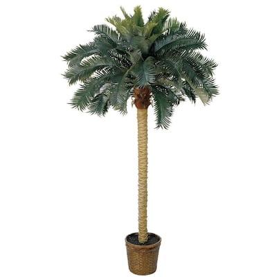 6 ft. Sago Palm Silk Tree