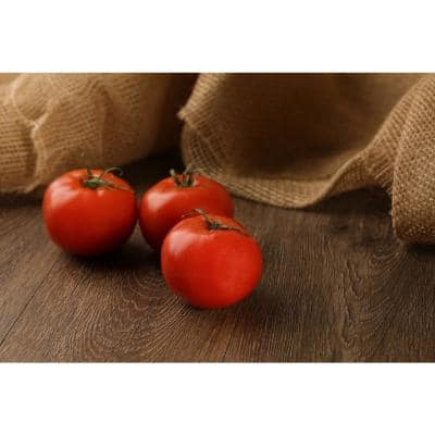 4.25 in. Grande Proven Selections Heirloom Beefsteak (Tomato) Live Vegetable Plant, 4-Pack