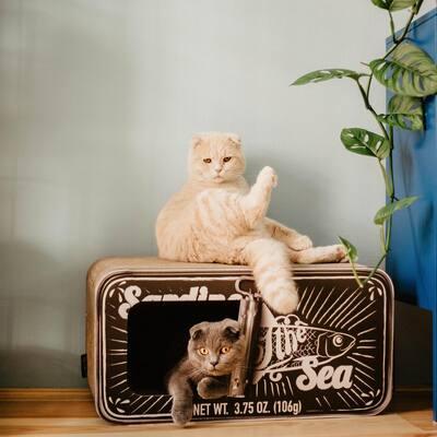 Sardine Black Cardboard Cat Scratcher
