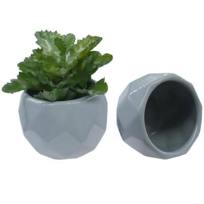 Matte White 4 inch Ceramic with stone man face, Planters for Succulent and Little Snake Plants, ABN5E154-DKGY
