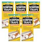 Scorpion Glue Trap (5-Pack)