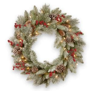 24 in. Snowy Bristle Berry Artificial Christmas Wreath with Battery Operated LED Lights