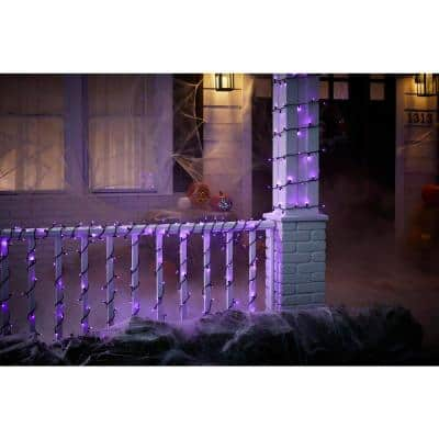 87 ft. 300 Purple Mini LED Lights