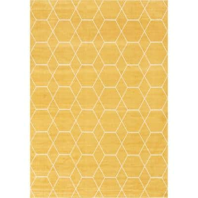 6 X 9 Yellow Area Rugs Rugs The Home Depot