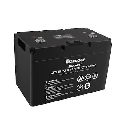 12-Volt 100AH Smart Lithium Iron Phosphate Battery