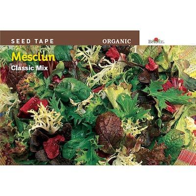 ST Mesclun Classic Organic Seed