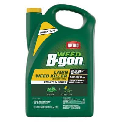 1 Gal. Weed B Gon Weed Killer for Lawns Concentrate