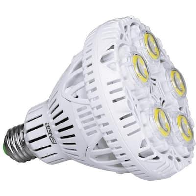 300-Watt Equivalent 4000 Lumens 1-Light BR30 Non-Dimmable LED Light Bulb in Daylight 5000K