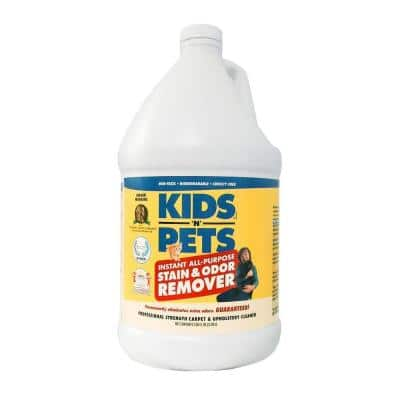 128 oz. Fabric and Upholstery Stain and Odor Remover