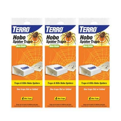 Hobo Spider Trap (3-Pack)