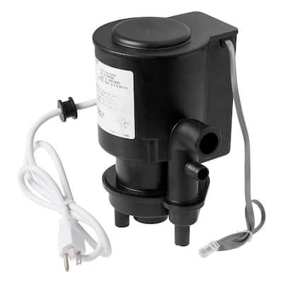Pump Flush Assembly