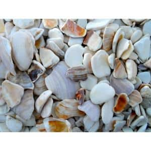 0.25 cu. ft. 3/4 in. to 1-1/4 in. Natural Landscaping Seashells