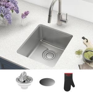 Dex Undermount Stainless Steel 17 in. Single Bowl Kitchen Sink