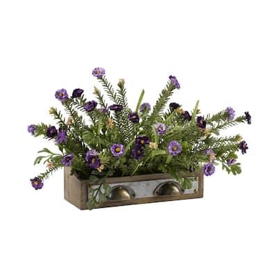 Indoor Purple Wild Flowers in Wooden Drawer