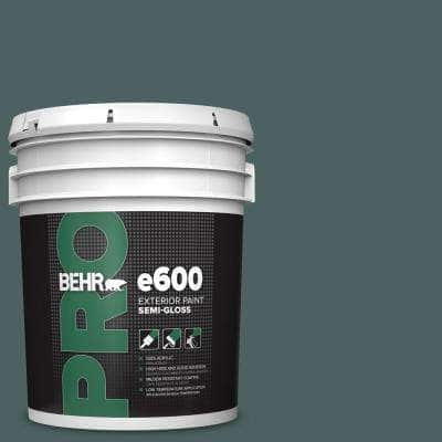 5 gal. #PPU12-20 Underwater color Semi-Gloss Exterior Paint