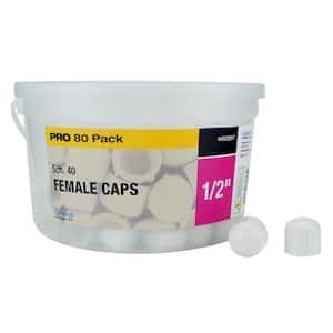 1/2 in. Schedule 40 PVC Female Threaded Cap Fitting (80-Pack)