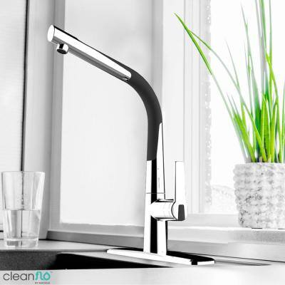 Dancer Single-Handle Standard Kitchen Faucet with Flexible Spout, Soap Dispenser in Chrome and Black