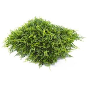 20'' x 20'' Wintergreen Fern-Artificial Korean Boxwood Hedges, Living Wall Panels (12 Piece)