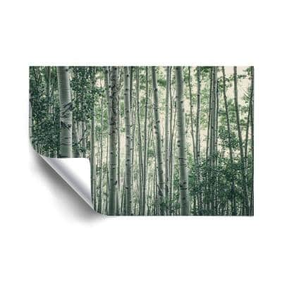 """""""Obscured by Alters"""" Landscapes Removable Wall Mural"""