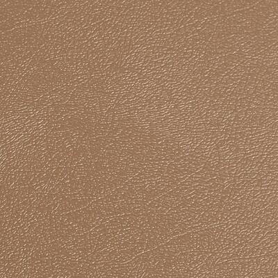 Levant 8.5 ft. x 22 ft. Sandstone Vinyl Universal Flooring
