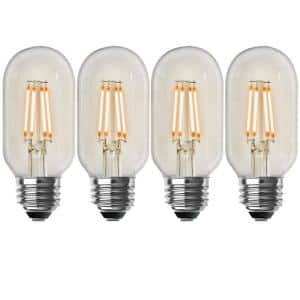 40-Watt Equivalent T14 Dimmable Straight Filament Clear Glass Vintage Edison LED Light Bulb, Warm White (4-Pack)