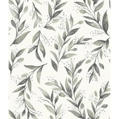 Olive Branch Charcoal Floral Pre-Pasted Strippable Wallpaper Roll (Covers 56 Sq. Ft.)
