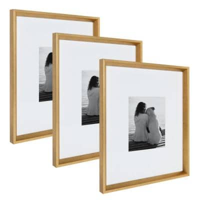 Calter 16 in. x 20 in. Matted to 8 in. x 10 in. Gold Picture Frame (Set of 3)