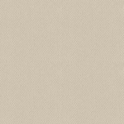 Corben - Color Shoreline Haze Pattern Beige Carpet