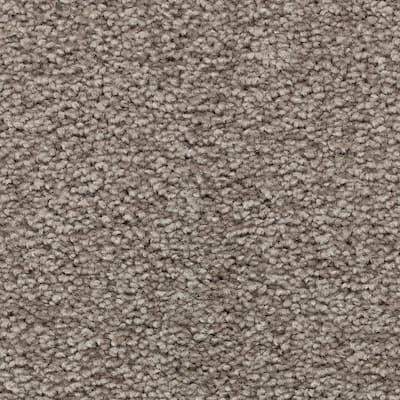 Unblemished II-Color Shiny Lustre Textured 12 ft. Carpet
